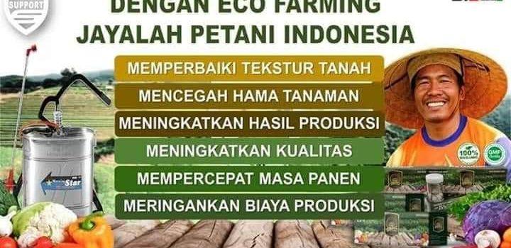 Eco Farming Pupuk Organik Peningkat Hasil Pertanian